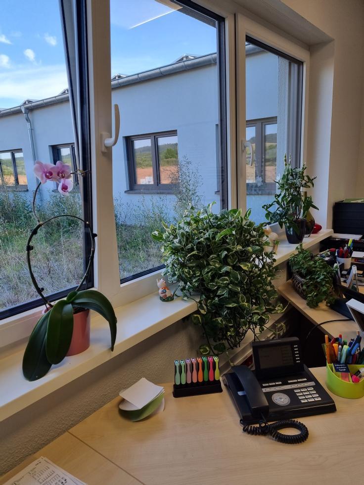 Arbeitsplatz mit Blick in den Innenhof
