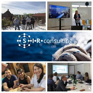 SIR consulting